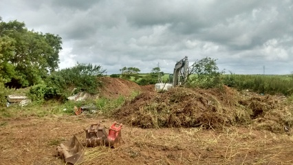 Land Clearance/Remidiation